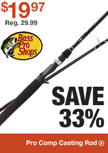 Pro Comp Casting Reel - Save 33% - Shop Now