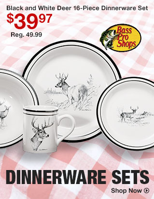 Dinnerware Sets - Shop Now