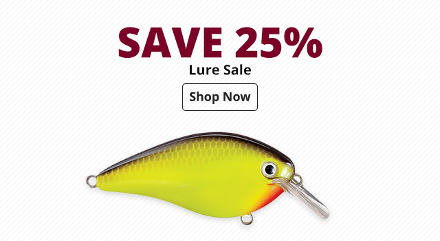 Save 25% Lure Sale