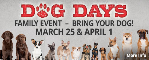 Dog Days Family Event - March 25 & April 1