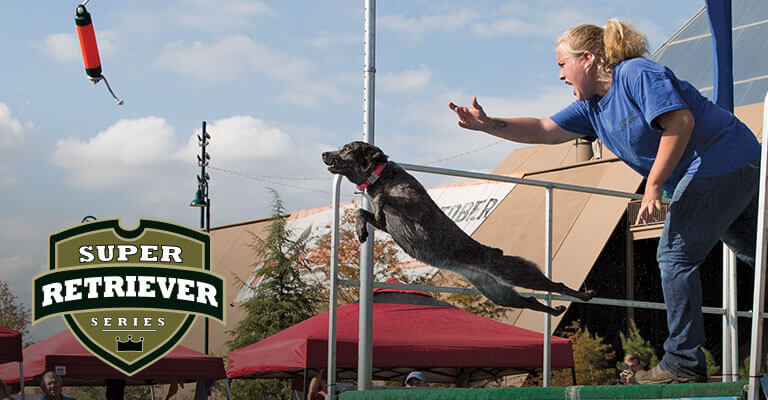 Amazing Jumps Performed By Top Sporting Dogs