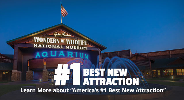 Voted America's #1 Best New Attraction - More