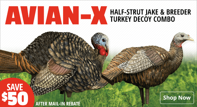 Avian-X Half-Strut Jake and Breeder Turkey Decoy Combo - Shop Now