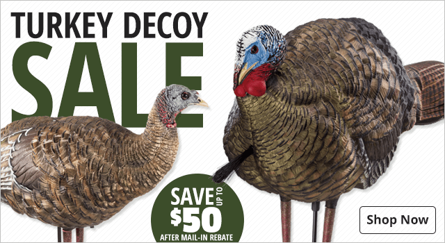 Turkey Decoy Sale - Shop Now