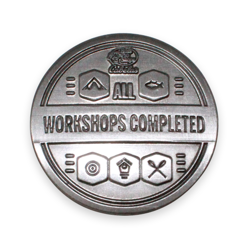 silver workshops comleted pin