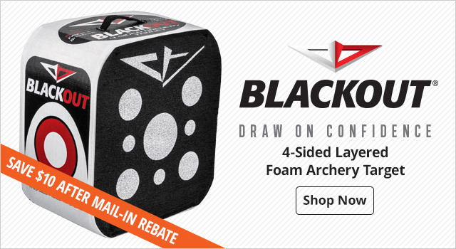 BlackOut 4-Sided Layered Foam Archery Target - Shop Now