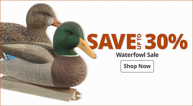 Waterfowl Sale- Shop Now