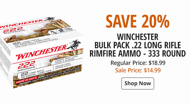 Winchester Bulk Pack Rimfire Ammo - .22 Long Rifle - 333 Rounds