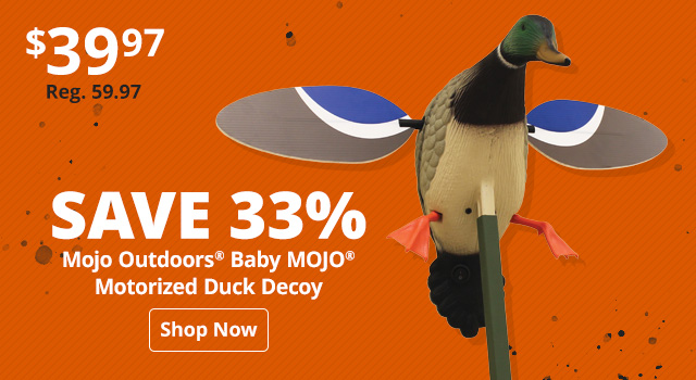 Save 33% on Mojo Outdoors Decoys