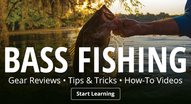 Bass Fishing Tips & Tricks
