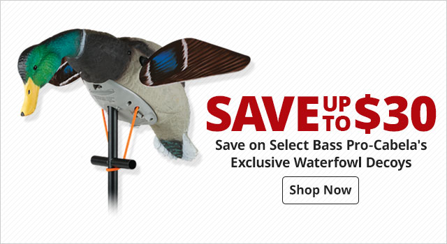 Save on Select Bass Pro-Cabela's Exclusive Waterfowl Decoys - Shop Now
