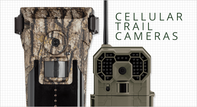 Cellular Trail Cameras - Shop Now