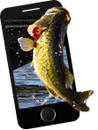Bass jumping out of phone graphic