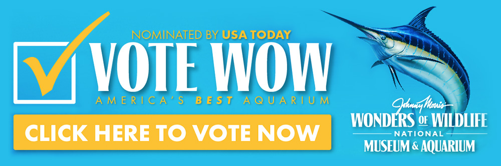 Vote Wonders of Wildlife for America's Best Aquarium