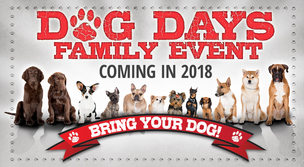 Dog Days Family Evening - Coming in 2018