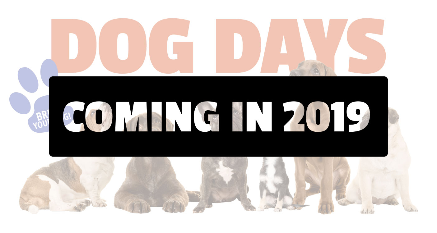 Dog Days - Coming 2019