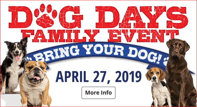 Dog Days Event - More Info