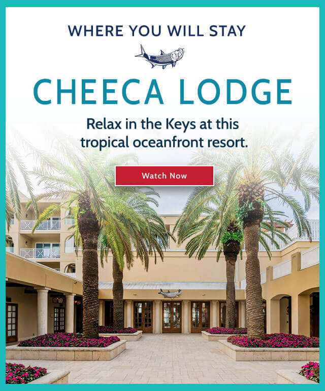 Cheeca Lodge