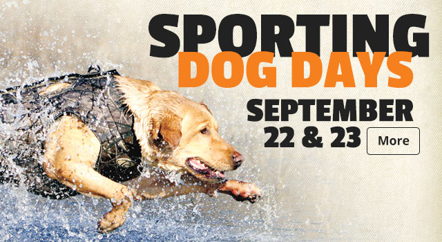Sporting Dog Days - September 22 & 23